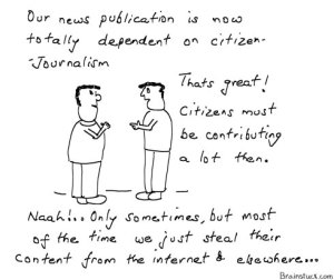 Citizen Journalism, Plagiarism, Stealing content from blogs, Piracy in Print Media, HT, TOI, National Daily