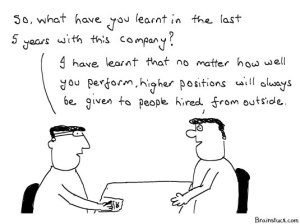 Corporate Ladder/Heirarchy - Business, Office, Management Cartoons, Job, Hard work, appraisals, rewards