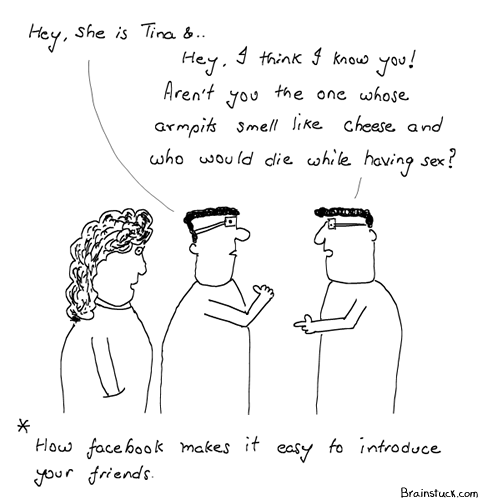 Facebook, Facebook Quizzes, Pesky, Perky, Annoying, Frustrating, Social Networking, Online, Web 2.0, Personal Information