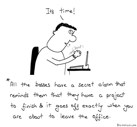 Boss, Work, Office, Project Work, Delegation, Employees, Subordinates, Humor, Comics, Cartoons,Management,