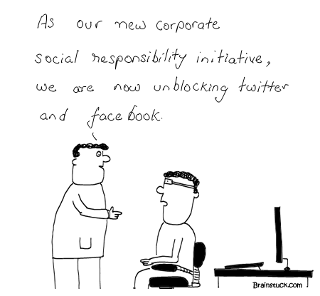 Social Media, Corporate Social Responsibility, Profits, Integration, Social networking, Twitter, Facebook, Gtalk, Online, comics, Cartoons